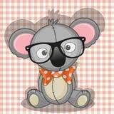 Hipster Koala Stock Photos