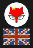 Hipster lady fox with British flag. Royalty Free Stock Photography