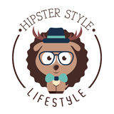 Hipster lifestyle Royalty Free Stock Images