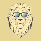 Hipster lion print Royalty Free Stock Image