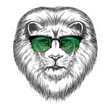 Hipster lion in sunglassesprint design Royalty Free Stock Photography