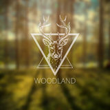 Hipster logo with deer Stock Images