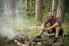 Hipster man with beard happy smile and roast sausages. On stick on bonfire in forest. Summer camping, hiking, vacation. Picnic, barbecue, cooking food concept Royalty Free Stock Photo