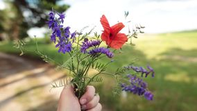 Man holding a bouquet of wildflowers in his hand. Travel concept. Hipster man is holding a bouquet of wildflowers in his hand. Forest, field and sky on a stock video footage