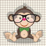 Hipster Monkey Royalty Free Stock Images