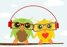 Hipster owl. Illustration of colorful owls wearing hipster glasses. Vector Stock Image