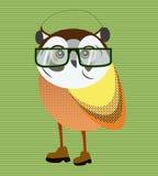 Hipster owl portrait stock illustration