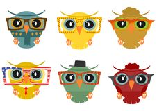 Hipster owl Royalty Free Stock Photos