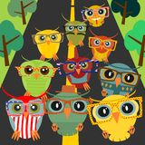 Hipster owl. Square illustration of colorful owls wearing hipster glasses. Vector Royalty Free Stock Images