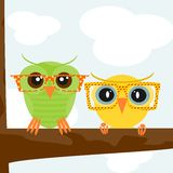 Hipster owl. Square illustration of colorful owls wearing hipster glasses. Vector Stock Images