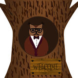 Hipster owl. Royalty Free Stock Images