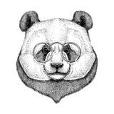 Hipster Panda Cute bamboo bear Image for tattoo, logo, emblem, badge design Stock Photos