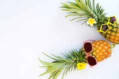 Hipster pineapples fashion. royalty free stock image