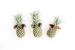 Hipster pineapples in sunglasses Stock Photography