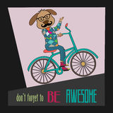 Hipster poster with nerd dog riding bike Stock Images