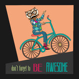 Hipster poster with nerd owl riding bike Stock Image