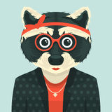 Hipster raccoon Stock Photography