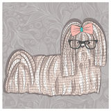 Hipster shih tzu with glasses and bowtie. Cute puppy illustratio Royalty Free Stock Photography