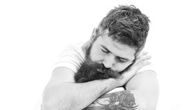 Hipster sleeping, copy space. Guy with tattoo fall asleep,. Close up. Man with sleepy face lies on his arm. Man with beard and mustache in deep sleep, white royalty free stock photo