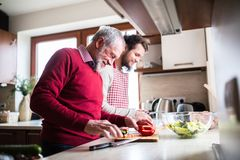 Hipster son with his senior father cooking in the kitchen. Two generations indoors stock photography