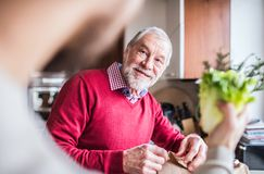 Hipster son with his senior father in the kitchen. Unrecognizable son with his senior father in the kitchen. Two generations indoors royalty free stock image