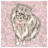 Hipster spitz with glasses and bowtie. Cute puppy illustration f Stock Photos