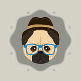 Hipster style pug dog  image Royalty Free Stock Photos