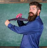 Hipster teacher formal wear necktie holds stapler. School stationery. Man scruffy use stapler dangerous way. Teacher. Bearded man with pink stapler chalkboard stock photography