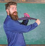 Hipster teacher formal wear necktie holds stapler. School stationery. Man scruffy use stapler dangerous way. Teacher. Bearded man with pink stapler chalkboard royalty free stock image
