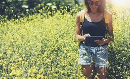 Hipster texting message on tablet computer, mockup of blank empty screen. Girl traveler using gadget on yellow flowers background. Close. Female hands royalty free stock photography