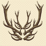 Hipster vintage background with deer antlers Stock Image