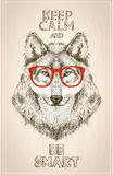 Hipster wolf portrait with glasses, hand drawn graphic illustartion Royalty Free Stock Photos