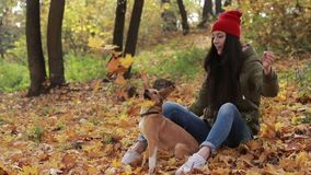 Hipster woman and dog playing with fallen leaves stock footage