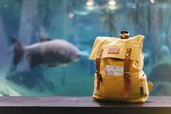 Hipster yellow backpack and map closeup. View from front tourist traveler bag on background blue sea aquarium. Person hiker visit. Ing oceanarium museum on royalty free stock photography
