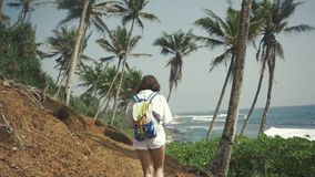 Hipster young girl woman tourist. Follow shot. View from a back tourist traveler planning route on background palm tree stock video