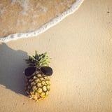 Hipsterananas på stranden - mode i sommar arkivfoton