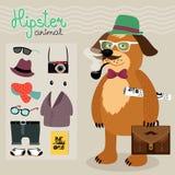 Hipsterbeståndsdelar för valphund Fotografering för Bildbyråer