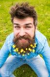 Hipsteren på lycklig framsida sitter på gräs som är defocused Mannen med skägget tycker om våren, grön ängbakgrund Grabb med mind fotografering för bildbyråer