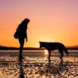 Hipsterflicka som spelar med hunden på en strand under solnedgång arkivbild