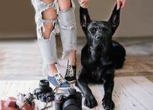 Hipsterkvinnan kommer på efterkälken nära digitala kameror med en labrador, begreppet, livsstil Royaltyfria Bilder