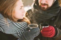Hipsterpaar in de winterpark met hete thee van thermosflessen Royalty-vrije Stock Foto's