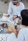 Hipsterparet dricker vin på picknick Arkivfoto