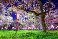 Hirano relikskrin i Kyoto Arkivbilder