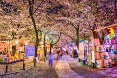 Hirano Shrine Spring Festival. KYOTO, JAPAN - APRIL 8, 2014: Visitors enjoy an annual spring festival at Hirano Shrine Stock Photography