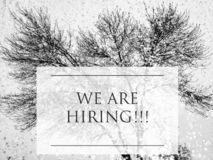 We are Hiring inscription. WE ARE HIRING inscription on a fall branches on.job vacant concept .march 30,2019 stock photos