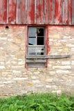Hirondelle de grange pilotant la vieille fenêtre abandonnée de ferme Photo stock