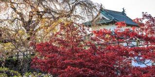 Hirosaki Castle σε Hirosaki, Aomori, Japa Στοκ Εικόνες