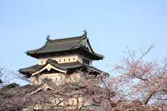 Hirosaki castle and cherry blossoms Royalty Free Stock Photos