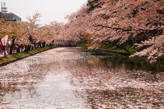 Hirosaki Cherry Blossom Festival 2018 al parco di Hirosaki, Aomori, Tohoku, Giappone aprile 28,2018: Viste spettacolari del fossa Fotografie Stock Libere da Diritti