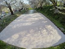 Hirosaki Cherry Blossom Festival 2018 al parco di Hirosaki, Aomori, Tohoku, Giappone aprile 28,2018: Viste spettacolari del fossa Immagini Stock Libere da Diritti
